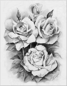 Gambaran Sketsa motif ukiran bunga mawar